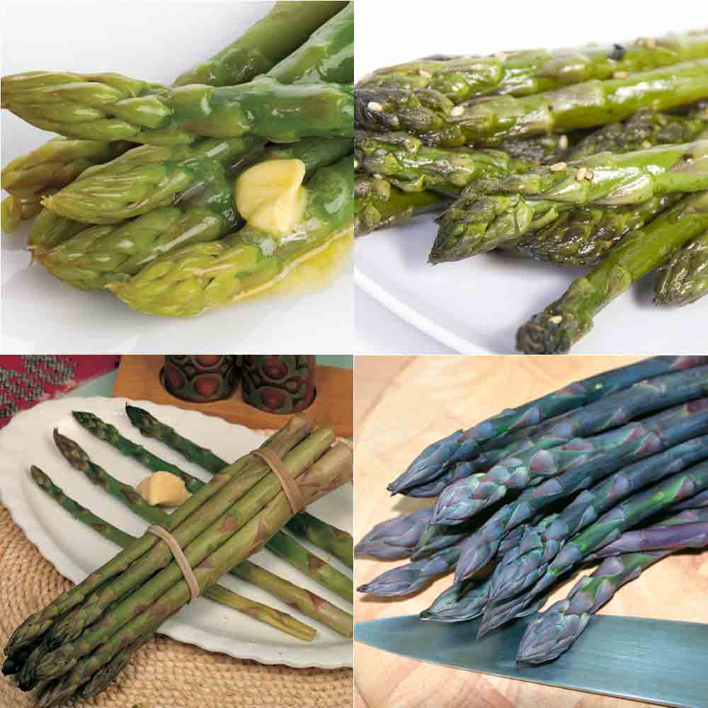 Asparagus Full Collection : Spring Planting - 10 crowns of each variety