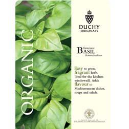 Basil 'Genovese' - Duchy Originals Organic Seeds - 1 packet (300 seeds)