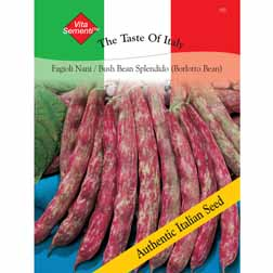 Dwarf Bean 'Splendido' (Borlotti Bean) - Vita Sementi® Italian Seeds - 1 packet (60 grams)