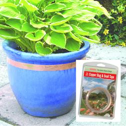 Copper Slug & Snail Tape - 1 pack of tape (4m x 30mm) Van Meuwen
