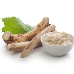 Horseradish Root - 5 thongs