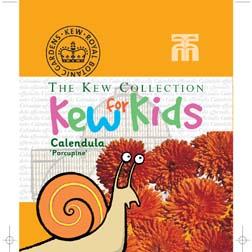 Calendula officinalis 'Porcupine' - Kew for Kids Children's Seeds - 1 packet (200 seeds)