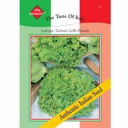 Lettuce 'Lollo Bionda' (Loose-Leaf) - Vita Sementi® Italian Seeds - 1 packet (4000 seeds)