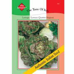 Lettuce 'Quattro Stagioni' (Butterhead) - Vita Sementi® Italian Seeds - 1 packet (6400 seeds)
