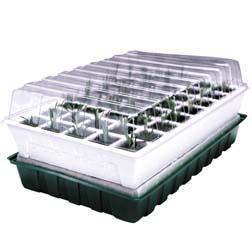 Propagator - Self Watering Propagator - 40 cell propagator