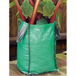 Rhubarb Patio Kit (Autumn Planting) - 2 large crowns + 2 grow bags