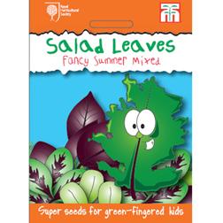 Salad Leaves 'Niche' - RHS Garden Explorers Children's Seeds - 1 packet (200 seeds)