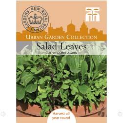 Salad Leaves 'Cut 'n' Come Again' - 1 packet (300 seeds)