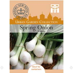 Spring Onion `Pompeii` 1 packet (300 spring onion seeds)