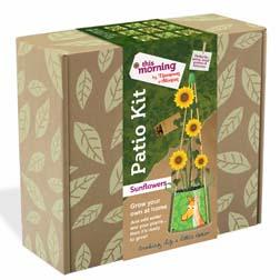 Sunflower Patio Kit - 1 complete kit