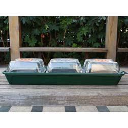 Windowsill Salad & Herb Planter - 1 planter